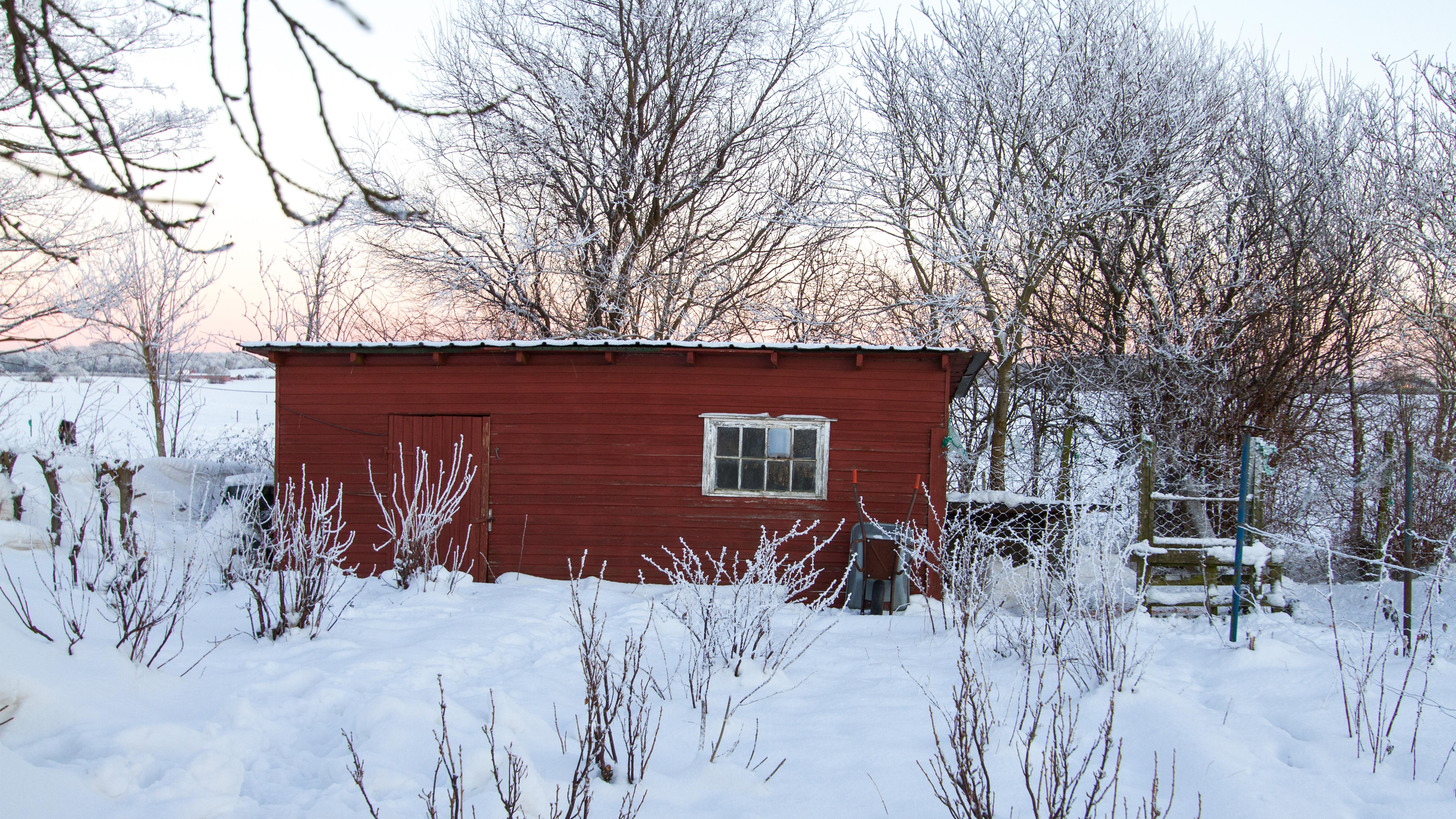 Hønsehuset Klædt I Sne
