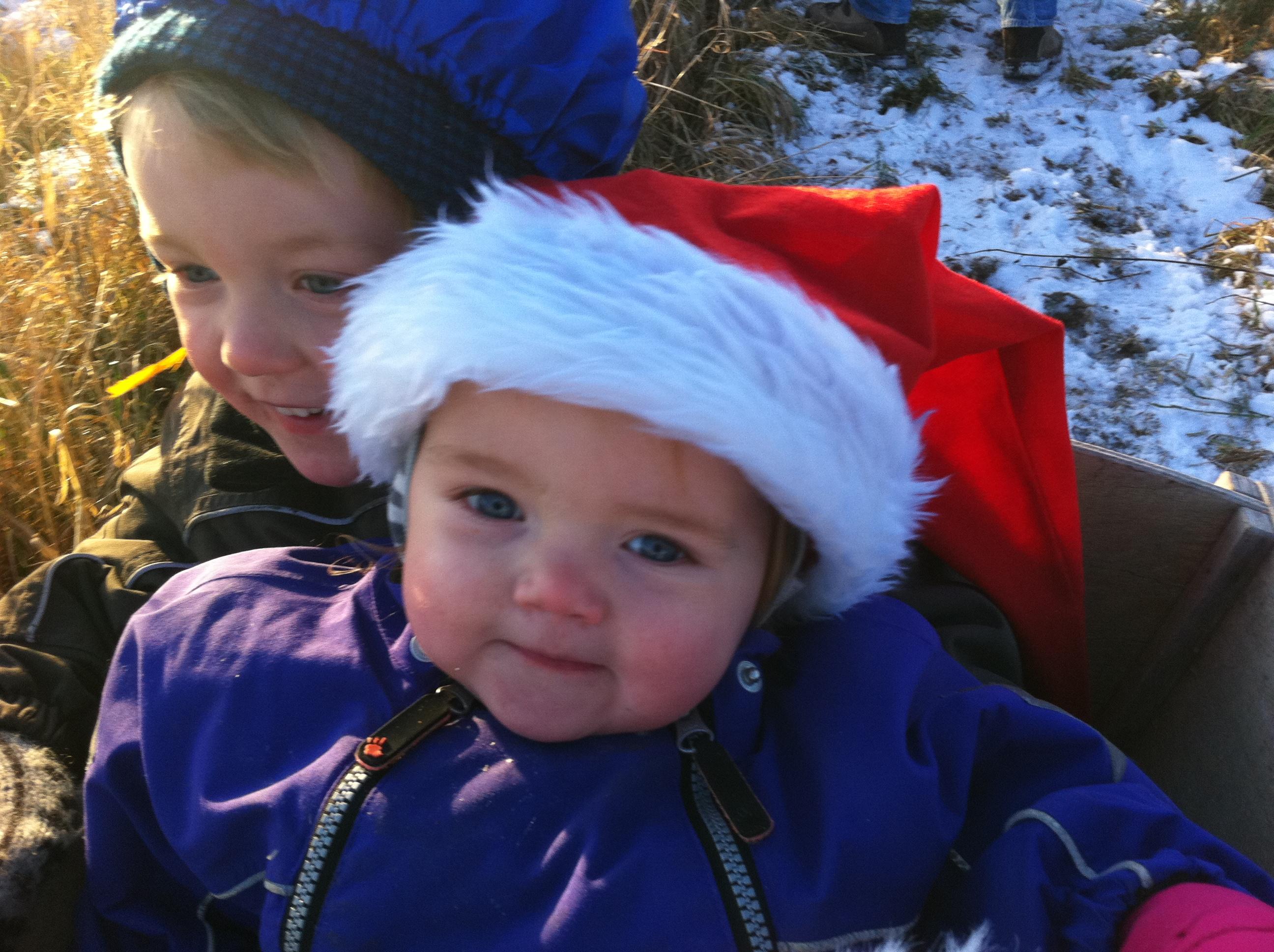Alle Juler Med